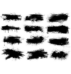 ink splashes brush strokes vector image