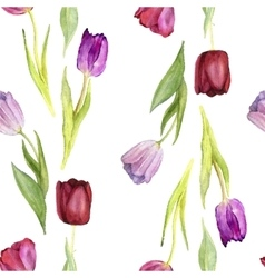 Seamless pattern with watercolor tulips vector