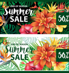 summer sale design vector image