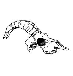 tattoo skull skull of a sheep horns ink vector image