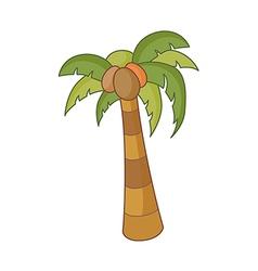 The fan palm vector