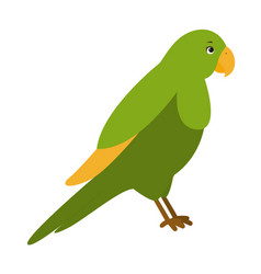 parrot for children vector image