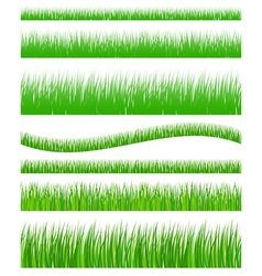 Set of seamless grass vector image vector image