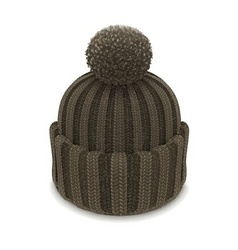 winter knitted bubble hat vector image