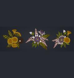 Flower bouquet dandelion ginger passion vector