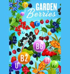 Garden berries organic natural fruit vitamins vector