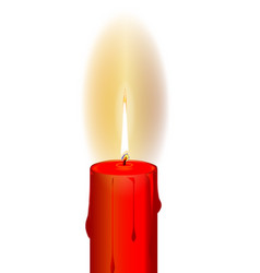isolated candle flame vector image