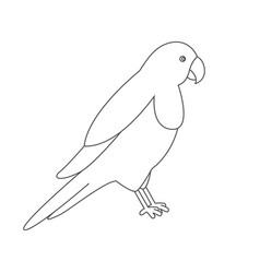 Parrot for coloring book vector