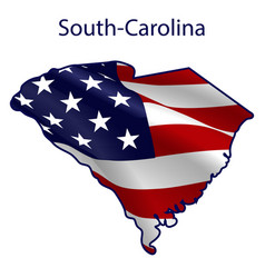 south carolina full american flag vector image