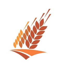 Agriculture icon with a field of golden wheat vector image