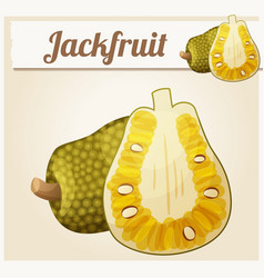 jackfruit cartoon icon vector image