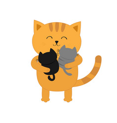 cat hugging two little bakitten father or vector image