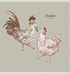 chicken collection hand draw sketch vector image