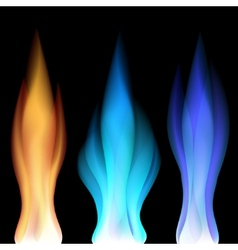 Fire flames over black vector image