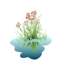 flower with leaves reflected in water vector image