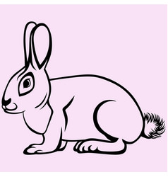 Hare or rabbit vector