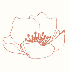 Minimalism card floral art design delicate poster vector