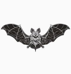 Realistic monochrome bat spread wings and cute vector