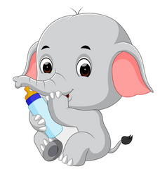 baby elephant with milk bottle vector image vector image