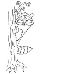 cute raccoon sitting on tree coon clipart vector image vector image