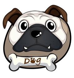 A head of a bulldog vector image