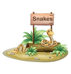 A wooden signboard with snakes vector image