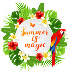 summer banner with parrot vector image