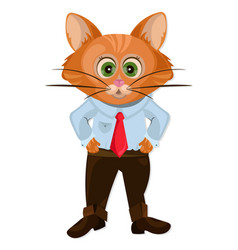 Cute cat cartoon character animation vector