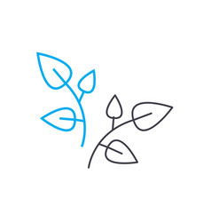 foliage appearance linear icon concept foliage vector image