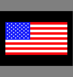 image american flag patriotic background vector image