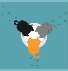 Kittens eating drinking milk from plate bowl paw vector