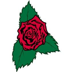 Rose vector