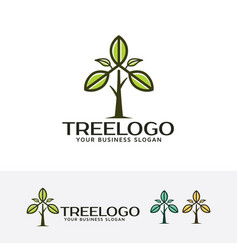 tree leaf logo vector image