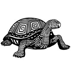 Turtle black white vector