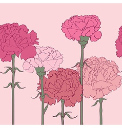 carnations pattern vector image