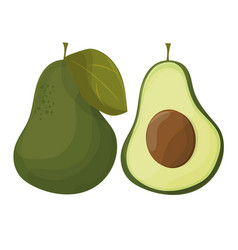 cartoon avocados whole and cut avocado isolated vector image