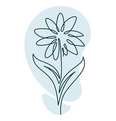 flower in blossom with leaves and petals line art vector image