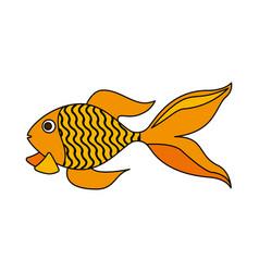 goldfish on white background vector image