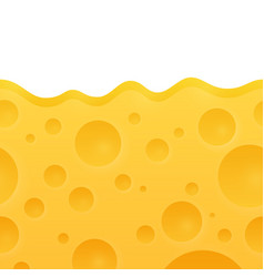 Texture of cheese vector