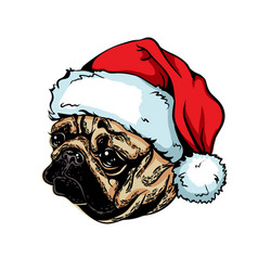 christmas greeting card breed dog pug wearing a vector image
