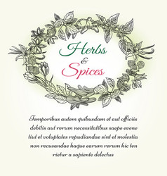 natural herbal seasonings frame with text vector image