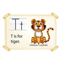 A letter T for tiger vector image