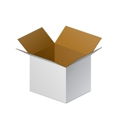 Carton Package Box Open On White Background vector image