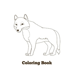 Coloring book forest animal wolf cartoon vector
