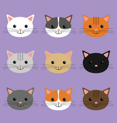 cute cats heads cartoon character vector image