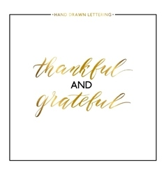 Thankful and grateful gold lettering isolated on vector image