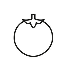 tomato outline icon vegetable symbol healthy food vector image