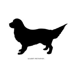 Black silhouette of dog Golden Retriever vector image