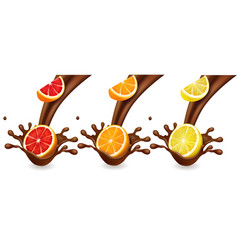 fruits cutrus in chocolate splash vector image