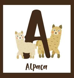 Letter a vocabulary alpaca vector
